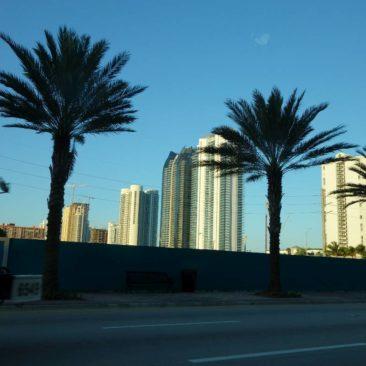 Miami unter Palmen