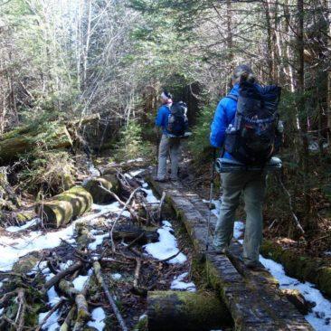 Auf dem verschneiten Trail