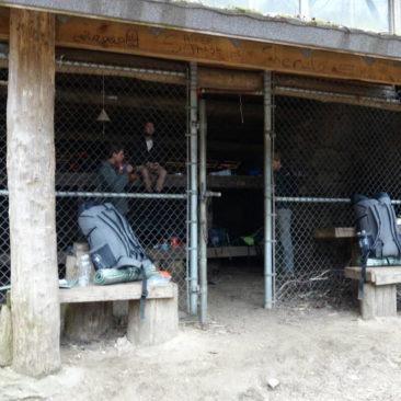 Bärensichere Shelter