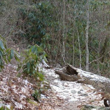 Der einziger Schnee in Georgia