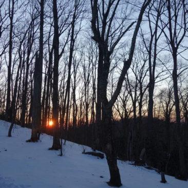 Sonnenuntergang bei der Vandervelter Shelter