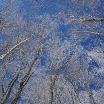 Winter und Sonne - großartige Kombination!