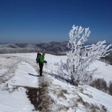 Winter und Ausblick - eine schöne Kombination