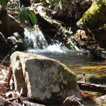 Sonne und Frischwasser - was will man mehr