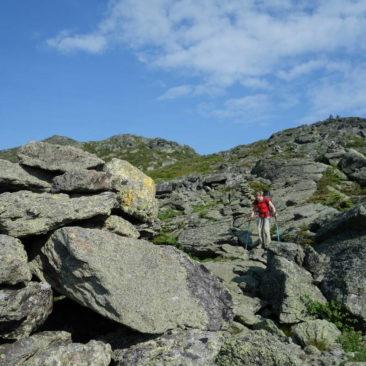 Steinige White Mountains