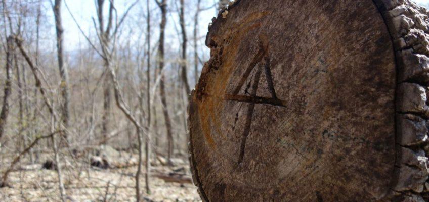 Unser Fazit zum Appalachian Trail