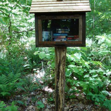 Bibliothek am Wegesrand - nette Idee