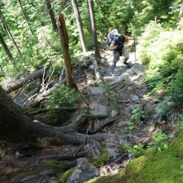 Die letzten Meter in New Hampshire künden bereits von Wurzeln und Steinen in Maine