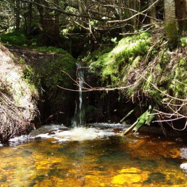 Hübsche Quelle entlang des Weges