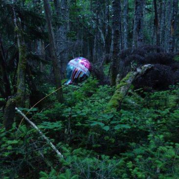 Gestrandeter Geburtstagsballon im Wald