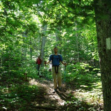 Dichter Wald verhindert Ausblicke - und so sieht der Trail eben zumeist aus.