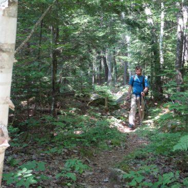 In Gedanken auf dem Trail - bei fehlenden Ausblicken gibt es auch keine Ablenkung