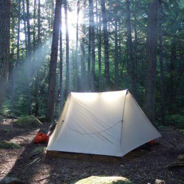 Zeltplatz im sonnendurchfluteten Wald