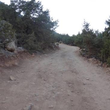 Typischer Weg auf der Akamas-Halbinsel