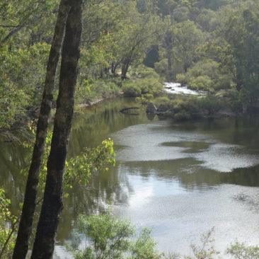Blick auf den Murray River kurz vor der Murray Shelter