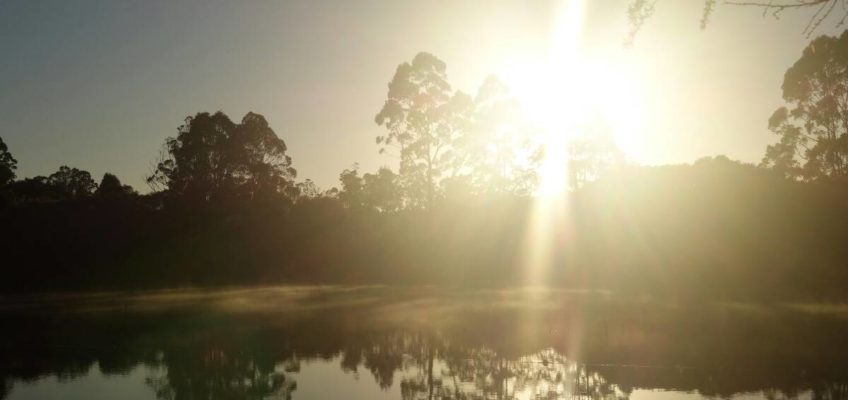 Bibbulmun Track: Von Pemberton nach Walpole