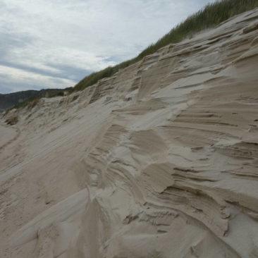Natürlicher Dünenabtrag am Strand
