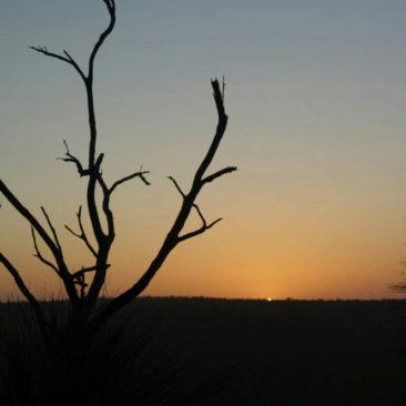 Sonnenuntergang an der Wallegh Shelter