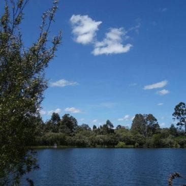 Der schöne Teich an der Schafer Shelter