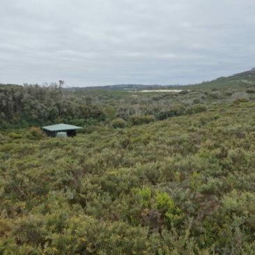 Die William Bay Shelter - wie alle Hütten windgeschützt angelegt