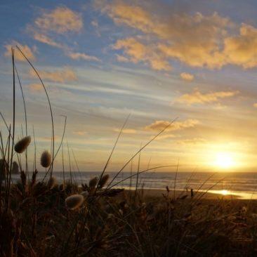 Sonnenuntergang am Strand von Piha