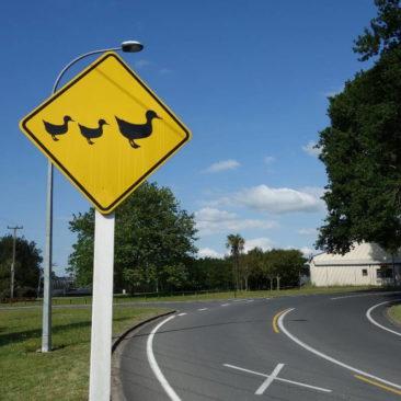 Jedem Tier sein Verkehrsschild