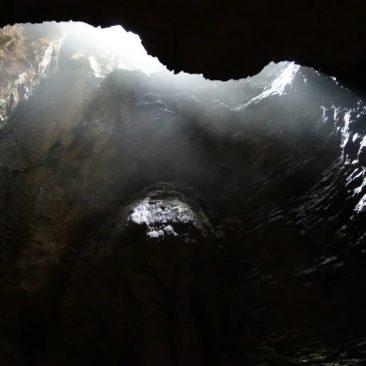 Lichtspiele in den Glühwürmchenhöhlen