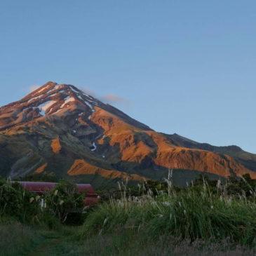 Von Auckland nach Wellington – von Vulkanen und Glühwürmchen