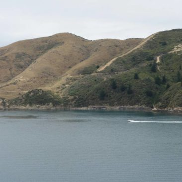 Einfahrt in den Marlborough Sound