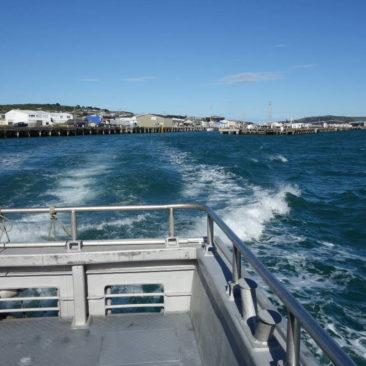 Fährüberfahrt nach Stewart Island