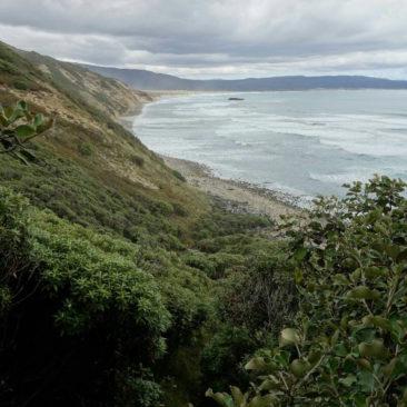Ausblick auf Mason Bay