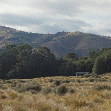 Die Kiwi Burn Hut