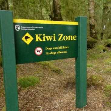 Hunde sind zum Schutz der Kiwis auf vielen Tracks nicht erlaubt