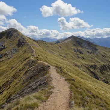 Lange Zeit auf dem Kamm entlang führt der Kepler Track zwischen Luxmore Hut und Iris Burn Hut