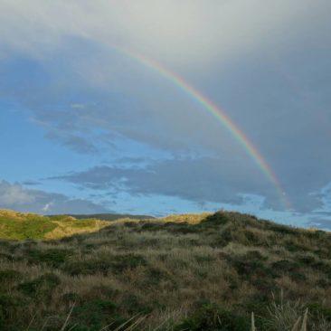 Regenbogen über der Otago Halbinsel