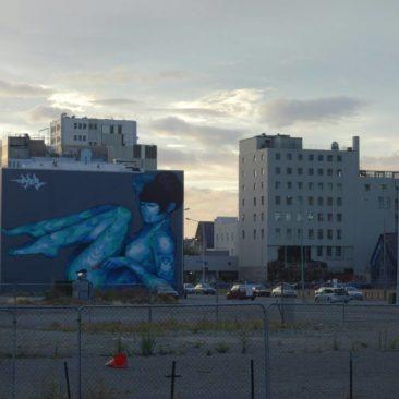Brachflächen, Parkplätze und Straßenkunst bestimmen derzeit das Stadtbild von Christchurch