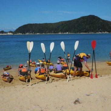 Im Abel Tasman Nationalpark sind auch viele geführte Touren unterwegs