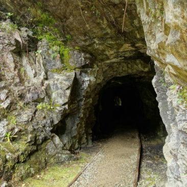 Einer von mehreren Tunneln entlang des Charming Creek Walkway