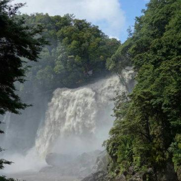 Der aufgrund des Regens enorm angeschwollene Mangatini Falls Wasserfall