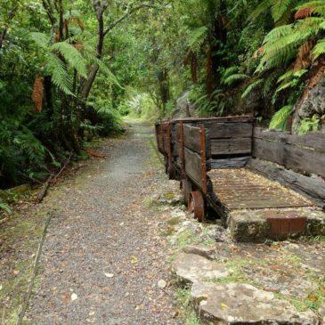 Entlang der Westküste von Neuseelands Südinsel