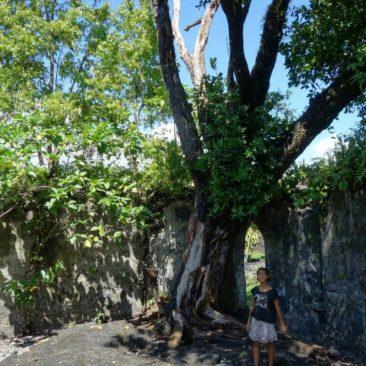 Im Inneren der von Lava gefluteten Kirche