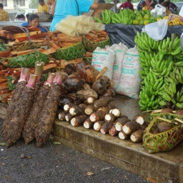 Auf dem Markt gibt es vor allem lokales Obst, Gemüse und Wurzeln
