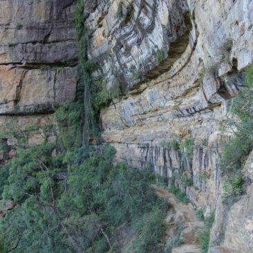 Der wirklich schöne National Pass Wanderweg, den man leider in voller Pracht nicht auf's Foto bekommt