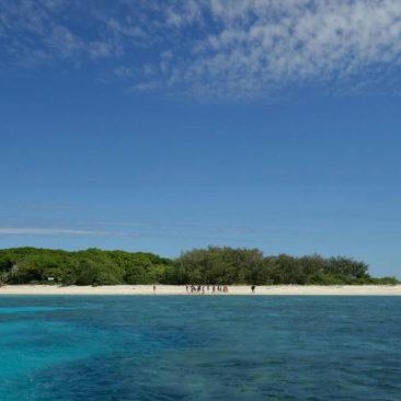 Ein Hauch von Südseeinsel - Lady Musgrave Island