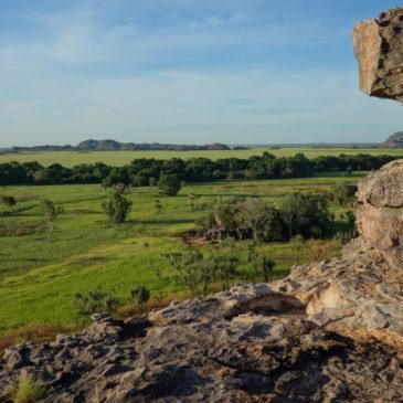 Die Nationalparks rund um Darwin – Litchfield, Kakadu und Nitmiluk