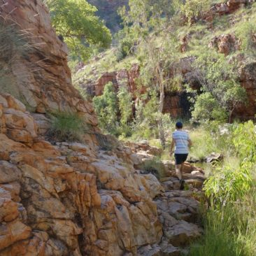 Michael läuft voraus und erkundet Amalia Gorge im El Questro Gebiet