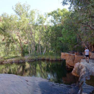 Da die Regenzeit erst kurz vorüber ist, findet sich noch recht viel Wasser in Amalia Gorge