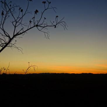Sonnenuntergang im Purnululu National Park