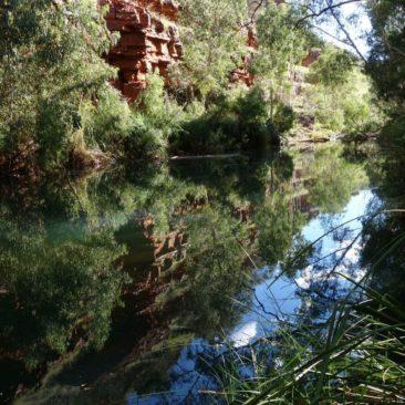 Spiegelung im Wasser der Dales Gorge