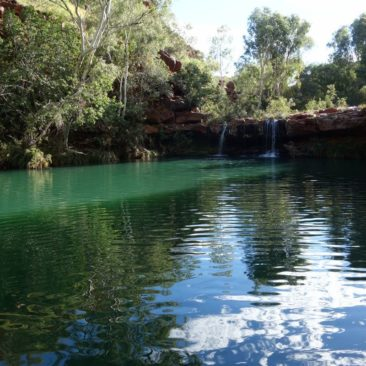 Fern Pool in der Dales Gorge